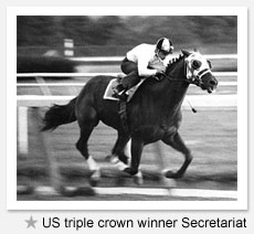 US triple crown winner Secretariat